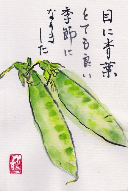 お手紙(安佐南区伴東)201312